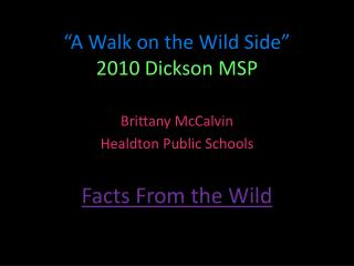 """A Walk on the Wild Side"" 2010 Dickson MSP"