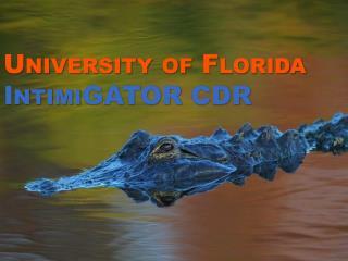 University of Florida  IntimiGATOR CDR