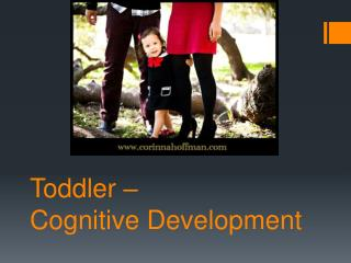 Toddler –  Cognitive Development