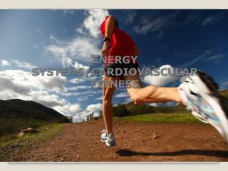 ENERGY SYSTEMS/CARDIOVASCULAR FITNESS