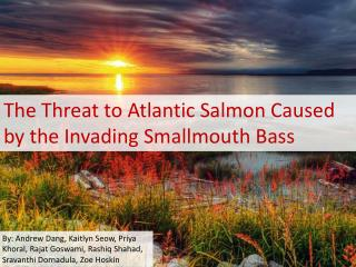 The Threat to Atlantic Salmon Caused by the Invading Smallmouth Bass