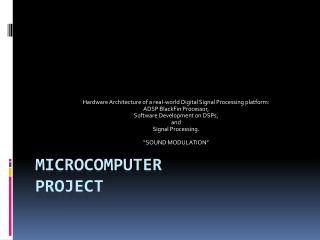 MICROCOMPUTER PROJECT