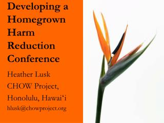 Developing a  Homegrown Harm Reduction  Conference