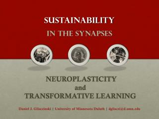 Sustainability  _ in the synapses