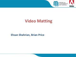 Video  Matting