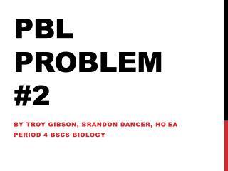 PBL Problem #2