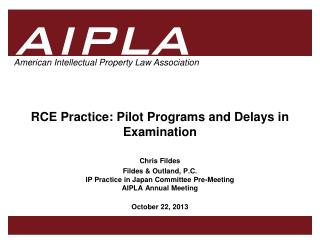 RCE  Practice: Pilot Programs and Delays in Examination