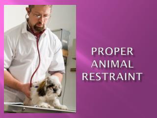 Proper Animal Restraint