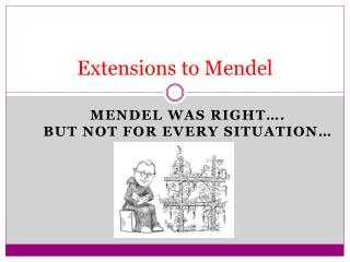 Extensions to Mendel