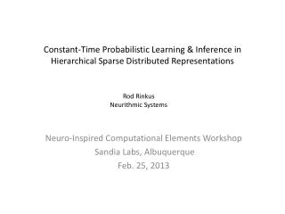 Neuro-Inspired Computational Elements Workshop  Sandia Labs, Albuquerque Feb. 25, 2013