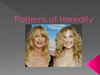 Patterns of Heredity