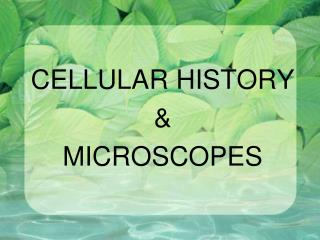 CELLULAR HISTORY &  MICROSCOPES