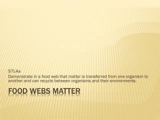 Food Webs Matter