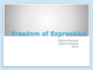 Freedom of Expression