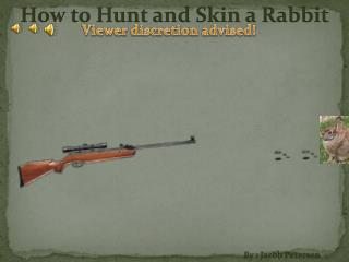 How to Hunt and Skin a Rabbit