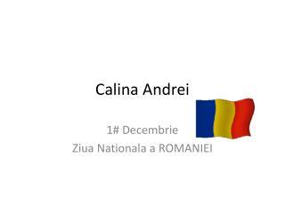 Calina  Andrei