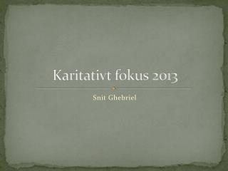 Karitativt  fokus 2013