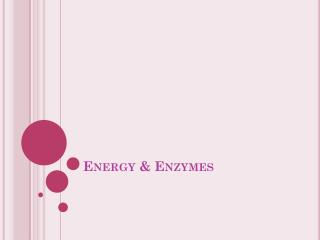 Energy & Enzymes