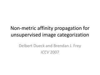Non-metric affinity propagation for unsupervised image categorization