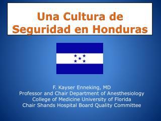 Una Cultura  de  Seguridad  en  Honduras