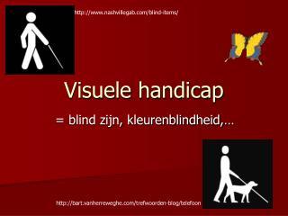 Visuele handicap