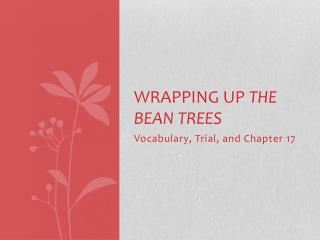 Wrapping Up  The Bean Trees