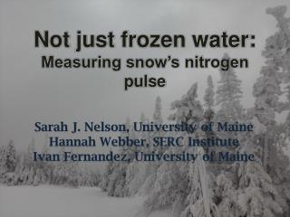 Not just frozen water: Measuring snow's nitrogen pulse