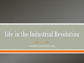 Life in the Industrial Revolution