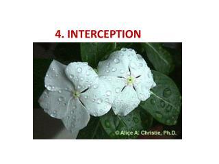 4. INTERCEPTION
