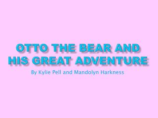 Otto the Bear and His Great Adventure