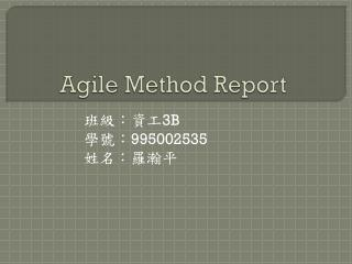Agile Method Report