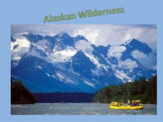 Alaskan Wilderness