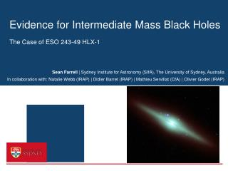 Evidence for Intermediate Mass Black Holes