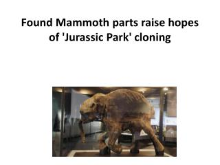 Found Mammoth parts raise hopes of 'Jurassic Park' cloning