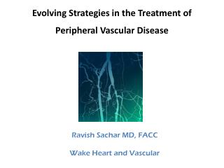 Evolving Strategies in the Treatment of  Peripheral Vascular Disease
