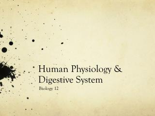 Human Physiology & Digestive System
