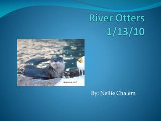 River  Otters 1/13/10