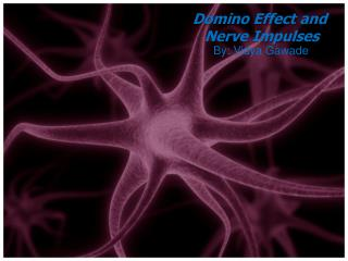 Domino Effect and  Nerve Impulses