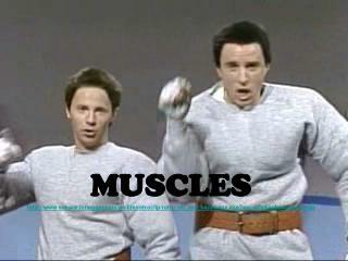 MUSCLES schwarzenegger