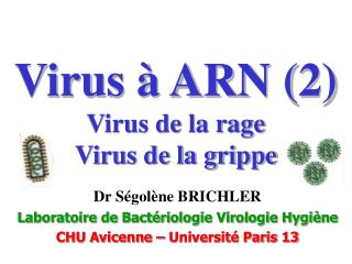 Virus   ARN 2 Virus de la rage Virus de la grippe