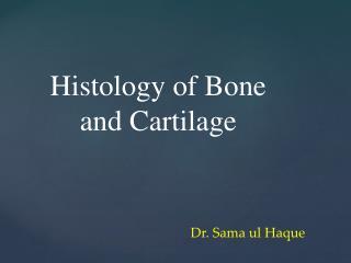 Dr. Sama ul Haque