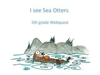 I see Sea Otters