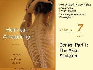 Bones, Part 1: The Axial Skeleton