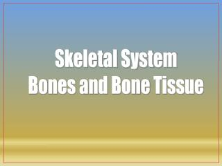 Skeletal System Bones and Bone Tissue