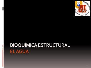 Bioquímica ESTRUCTURAL El agua