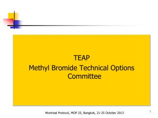 TEAP Methyl Bromide Technical Options Committee