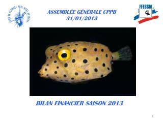 ASSEMBLÉE GÉNÉRALE CPPB  31/01/2013