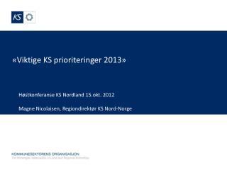 «Viktige KS prioriteringer 2013»