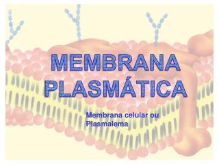 MEMBRANA PLASM�TICA