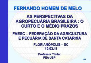 AS PERSPECTIVAS DA AGROPECUÁRIA BRASILEIRA : O CURTO E O MÉDIO PRAZOS